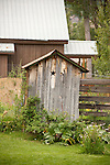 Wooden outhouse with carved star vent in a back yard