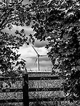 Wind turbine in distance seen through hedge
