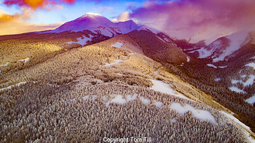Snowy forest in La Sal Mountains, Utah. Manti-La Sal National Forest, Snow-encrusted forest after weeks of ice and snow