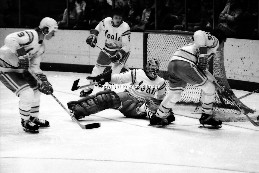 California Golden Seals actioin 1975.<br />#9 Larry Patey, #5 George Pesut, #15 Jim Neilson, and goalie Gary Simmons. (photo by Ron Riesterer)