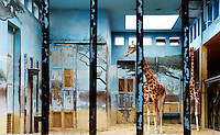 Detail of Giraffes in  enclosure with fresco,  Parc Zoologique de Paris, or Zoo de Vincennes, (Zoological Gardens of Paris, also known as Vincennes Zoo), 1934, by Charles Letrosne, 12th arrondissement, Paris, France, pictured on April 28, 2011 in the afternoon. In November 2008 the 15 hectare Zoo, part of the Museum National d'Histoire Naturelle (National Museum of Natural History) closed its doors to the public and renovation works will start in September 2011. The Zoo is scheduled to re-open in April 2014. Picture by Manuel Cohen.