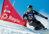 20150131: SLO, Snowboard - FIS Snowboard World Cup in Parallel GS at Rogla