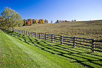 A farm field under a bright blue sky, a ridge of trees with autumn foliage in the distance. A four rail, split rail fence casts an abstract shadow in the foreground.