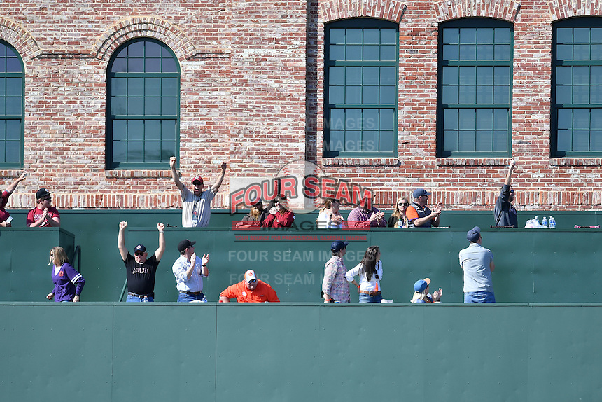 Fabs celebrate a Jonah Bride homer into the Green Monster seats during the the Reedy River Rivalry game on Saturday, March 4, 2017, at Fluor Field at the West End in Greenville, South Carolina. Clemson won, 8-7. (Tom Priddy/Four Seam Images)