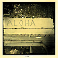 Enjoy The Ride Hawaii 2011