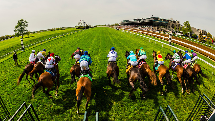 USA-Kentucky-Lexington-Keeneland Racecourse-Turf track