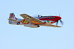 Steve Hinton Jr. pilots the brightly colored P-51D Mustang 'Sparky' during heat races at the 2008 Reno National Championship Air Races held annually at Stead Field, Nevada.  Hinton piloted Sparky, a North American Aviation built P-51D Mustang powered by a Rolls Royce Merlin engine, to a 3rd place finish in the Bronze finals with a speed of 314.111 mph.