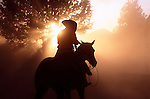 Cowboy on horseback with sun beams in dust