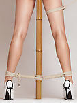 Sexy woman legs tied with bondage ropes to a bamboo pole