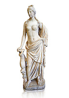 2nd - 1st century BC Roman marble sculpture of Aphrodite (Venus), 'Marine Venus' Type with a dolphin, copied from a Hellanistic Greek original,  inv 6296, Museum of Archaeology, Italy, white background