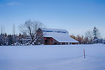 Idaho, Northern, Bonner County, Westmond.  A barn  in a winter landscape.