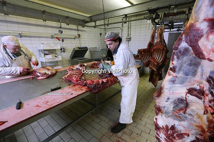 """Foto: VidiPhoto..NIJKERK - Bij paardenslager Jan van der Veen is het topdrukte op dit moment. Dankzij de nationale commotie over de aanwezigheid van paardenvlees in diverse vleesgerechten, is de vraag naar 'paard' bij consumenten enorm toegenomen. Van der Veen zelf constateert een toegenomen vraag van zeker 40 procent naar paardenvlees. """"Ze komen uit het hele land bij ons vleespaketten halen."""" Het volgens hem """"meest gezonde en luxe stuk scharrelvlees"""" ligt inmiddels zelfs in de schappen van supermarktketen Jumbo. Het vlees is voornamelijk afkomstig van afgekeurde sportpaarden. Die zijn te duur in het onderhoud. ."""