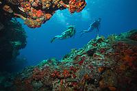 Scuba Divers at Cow Rock<br /> Virgin Islands