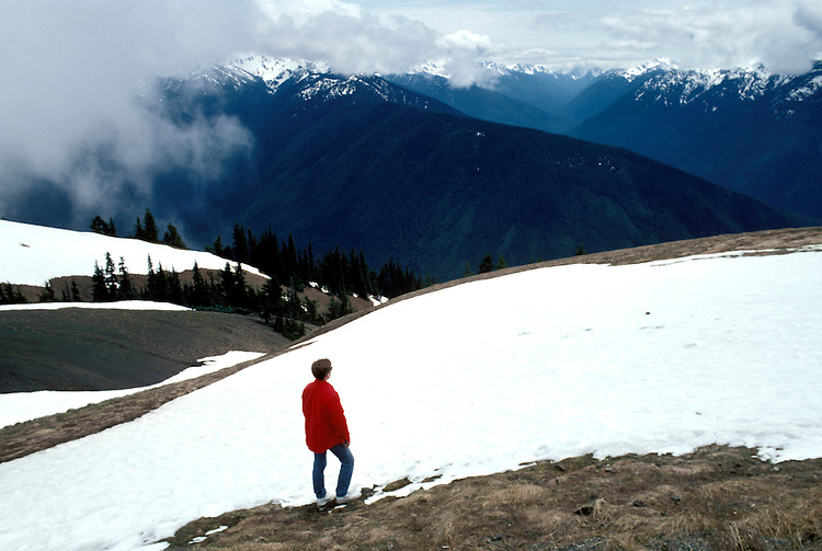 WA: Washington State; Olympic National Park, Hurricane Ridge      .Photo Copyright: Lee Foster, lee@fostertravel.com, www.fostertravel.com, (510) 549-2202.Image: waolym212