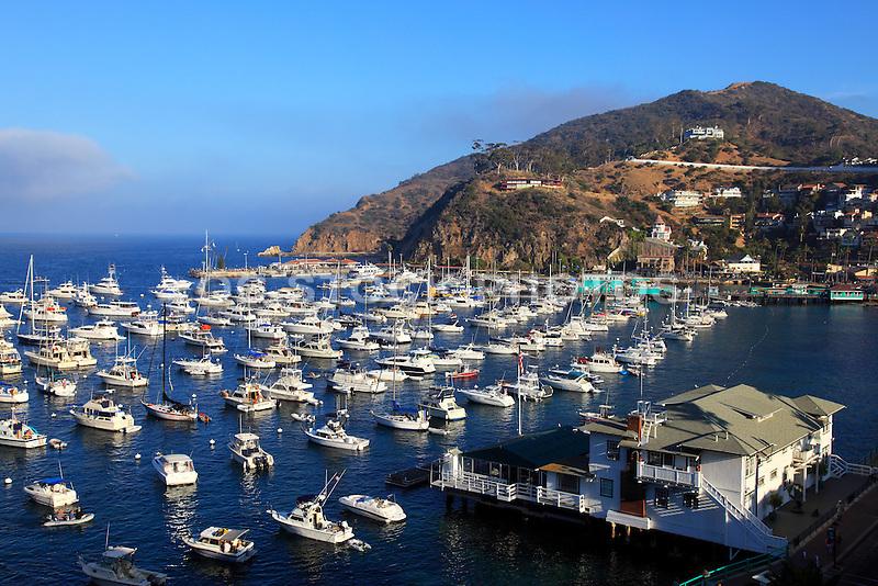Avalon bay at catalina island socal stock photos oc for Catalina bay