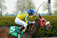 Daisy Devine trained by Andrew McKeever and ridden by James Graham take the G1 Jenny Wiley Stakes at Keeneland Race Course in Lexington, Kentucky Saturday April 14, 2012. (Eric Patterson/ Eclipse Sportswire)