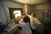 Veterinarians examining an x-ray in a clinic, Netherlands
