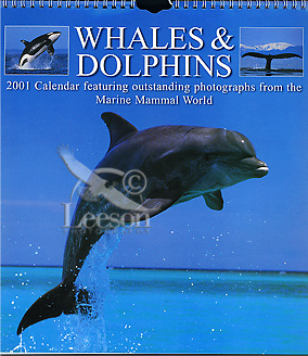 Products-Whales-&-Dolphins-2001-Calendar
