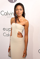 Cannes 2013 - Calvin Klein Party