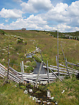 An old rail fence crossing a small creek in the Norwegian mountains at Venabygdsfjell, Norway.