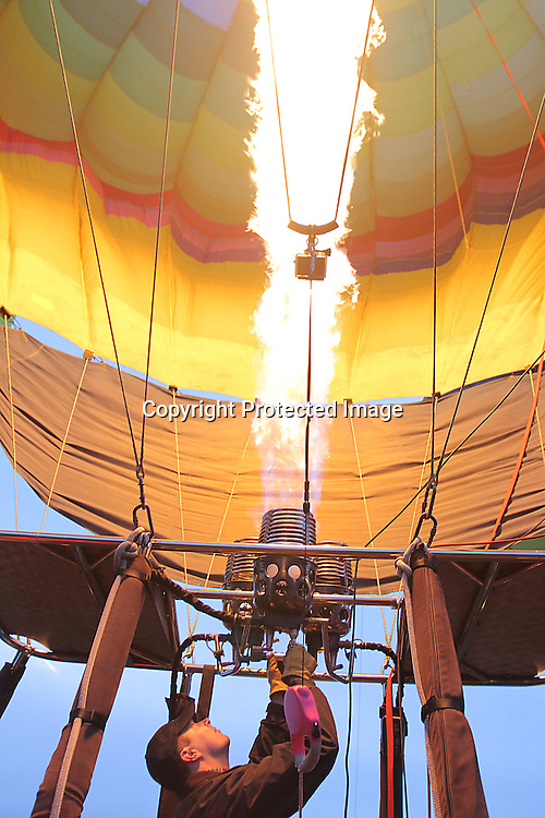 Hot air balloons sail over Napa Valley, California.