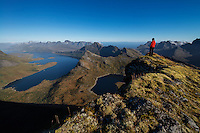 Female hiker on the summit of Branntuva (702m) with view over Selfjord, Moskenesøy, Lofoten Islands, Norway