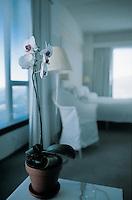 Hotel room with a view of LA. Hotel Mondria LA