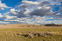Sagebrush and grasslands on the Chapman Bench in the Bighorn Basin of Wyoming