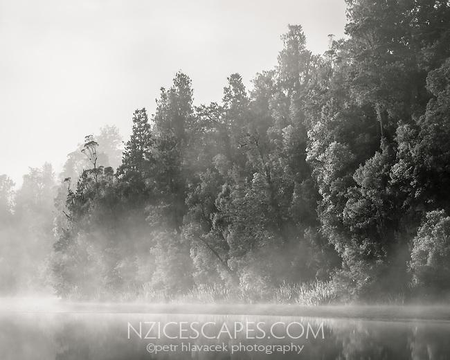 Sunrise on morning fog in native forest at Lake Matheson, Westland Tai Poutini National Park, UNESCO World Heritage Area, West Coast, New Zealand, NZ