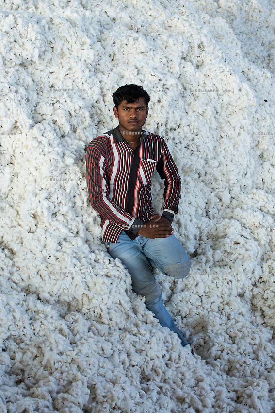 Labourer Narain Charan, 21, takes a rest in the mountain of raw Fairtrade cotton after unloading it from a truck at a ginning factory that is contracted by Pratibha in Karhi, Khargone, Madhya Pradesh, India on 12 November 2014. Photo by Suzanne Lee for Fairtrade