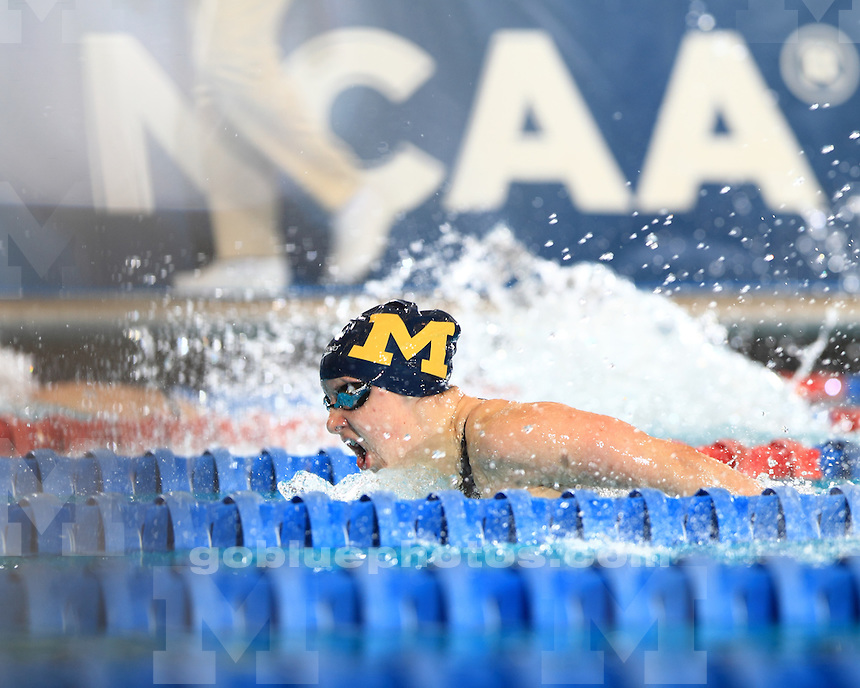 The University of Michigan women's swimming and diving team compete on the second day of the 2013 NCAA National Championships at the IU Natatorium in Indianapolis, Ind., on March 22, 2013.