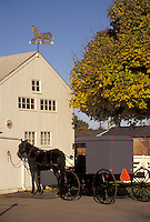 AJ3266, amish, horse and buggy, farm, Amish Country, Lancaster County, Pennsylvania, Amish horse and covered buggy stand in front of a barn in Intercourse in Pennsylvania Dutch Country in the state of Pennsylvania.