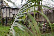 The village of Gibidai (with it's school house supplied by Turama Forest Industries, with only basic chairs and desks, no school books or teacher) in the forests of the 'Turama extension' logging concession, Paia port,  Gulf Province, Papua New Guinea, Thursday 4th September 2008. These forests are being felled by Turama Forest Industries - a group company of Malayasian logging giant Rimbunan Hijau. Twenty percent of global greenhouse emissions annually are caused by the deforestation of natural forests worldwide.