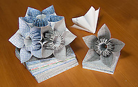 A still life detailing how Michelle's recycled security envelope kusudama (ball origami) was made.  In this picture the project itself is only half finished, but two additional flowers (each consisting of five individual squares of cut out security envelope) are next to it.  One flower is facing away from the camera, so you can see the USPS bar code from the front of the envelope.  Different sizes of individual squares of paper are shown below the project.  Michelle won first place  at the 2011 OC Fair for this project.