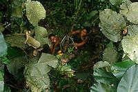 """The women catch the basket full of honey, the """"pendi"""" at the moment it is lowered. In general, during the big honey season, the families are in the forest and the women also participate in the harvests.///Les femmes récupère le panier remplit de miel «pendi» au moment de sa descente. Généralement, pendant la grande saison du miel, les familles sont en forêt et les femmes participent également aux récoltes."""