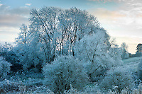 Winter scene hoar frost in The Cotswolds, UK