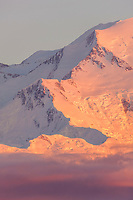 Pink evening light falls on Pioneer ridge and the north face of Mt McKinley, North America's tallest mountain. Denali National Park, interior, Alaska.