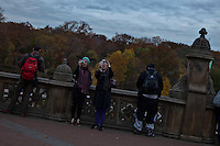 Tourists visit Central Park during late autumn in New York . November 11, 2013, Photo by Kena Betancur/VIEWpress