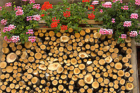 Interlaken Bernese Alps Switzerland - Wood stacked outside Swiss wooden house