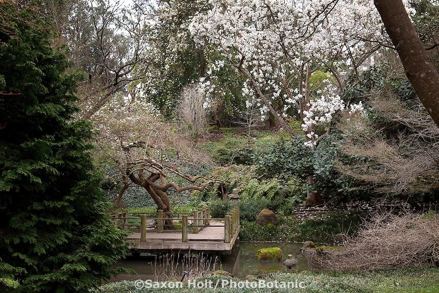 Holt 286 3225 Cr2 Photobotanic Stock Photography Garden