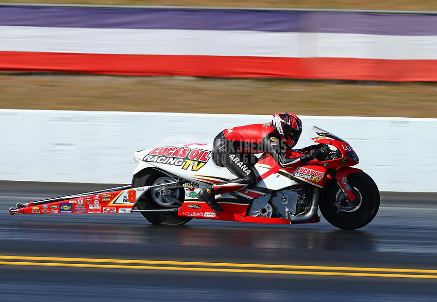 Mar 18, 2017; Gainesville , FL, USA; NHRA pro stock motorcycle rider Hector Arana Jr during qualifying for the Gatornationals at Gainesville Raceway. Mandatory Credit: Mark J. Rebilas-USA TODAY Sports