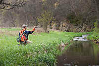 Fishing a small spring creek near Viroqua in Wisconsin's Driftless Area.