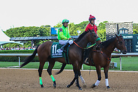 HOT SPRINGS, AR - April 15: Conquest Mo Money #11 and jockey Jorge Carreno in the post parade prior to the Arkansas Derby at Oaklawn Park on April 15, 2017 in Hot Springs, AR. (Photo by Ciara Bowen/Eclipse Sportswire/Getty Images)
