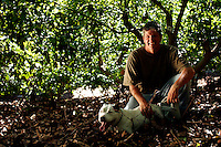 Frank Wells, a sustainable farmer,  takes a moment in his Avocado orchard in Camarillo, Calif., on the afternoon of Friday, June 16, 2006.  Frank has been growing avocados for sale at a variety of local farmer's markets since 1994.  He practices a form of organic sustainable farming that involves the use of organic fertilizer and beneficiary insects as opposed to pesticides.  He tends to the orchards with his wife. (Photo by Bryce Yukio Adolphson/Brooks Institute of Photography, &copy; 2006)<br />