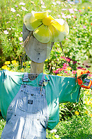 Scarecrow in Community Garden, Yarmouth ME