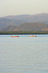 Chira Fisherman on Gulf of Nicoya