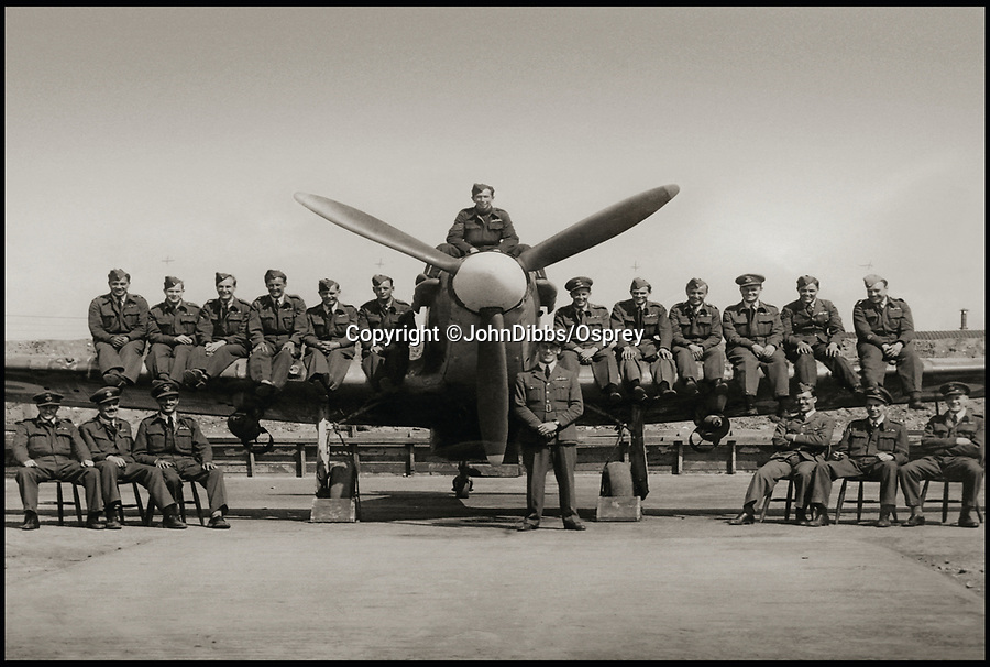 BNPS.co.uk (01202 558833)<br /> Pic: JohnDibbs/Osprey/BNPS<br /> <br /> 174 Hurricane Sqn at Manston in 1942- Poignantly the crosses mark pilots later KIA.<br /> <br /> Last of the Few - A photographer's stunning new book is a tribute to the last Hawker Hurricane's - the true workhorse of the Battle of Britain.<br /> <br /> Only 13 WW2 Hurricanes are still airworthy today, compared to over 60 of their more glamorous counterpart the Spitfire.<br /> <br /> But during the Battle of Britain there were in fact twice as many Hurricane's as Spitfires taking on Hitlers Luftwaffe in the skies over southern England.<br /> <br /> The Hurricane may be viewed as less glamorous than the Spitfire, but these stunning photographs reveal just how majestic it was in full flight.<br /> <br /> Photographer John Dibbs has got up close and personal to the legendary fighter planes in order to capture them like never before.<br /> <br /> His 10 year quest for surviving Hurricanes took him all over the world and he photographed them in England, France, the United States and New Zealand.<br /> <br /> Using the skill and experience of highly experienced RAF and civilian pilots, Mr Dibbs was able to fly to within 15ft of some of the last remaining Hurricanes - with breath-taking results.<br /> <br /> There was a fair degree of skill involved as he took the photos from the canopy of a Second World War trainer aircraft which was travelling at 200mph while confronting wind blast.<br /> <br /> The thrilling photos were taken for an a definitive history of the Hurricane which is told by Mr Dibbs and aviation historians Tony Holmes and Gordon Riley in their new book Hurricane, Hawker's Fighter Legend.