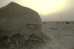Marsh Arabs. Southern Iraq. Circa 1985. Marsh Arab adobe home banks of river Tigris.