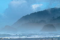 Morning fog dims the hills in the distance along the Oregon Coast with waves rolling in from the ocean and seagulls flying low across the water.