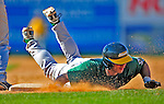 19 April 2009: University of Vermont Catamounts' infielder Dave Soltis, a Freshman from Plainville, CT, dives safely back to first during a game against the University at Albany Great Danes at Historic Centennial Field in Burlington, Vermont. The Great Danes defeated the Catamounts 9-4 in the second game of a double-header. Sadly, the Catamounts are playing their last season of baseball, as the program has been marked for elimination due to budgetary constraints on the University. Mandatory Photo Credit: Ed Wolfstein Photo